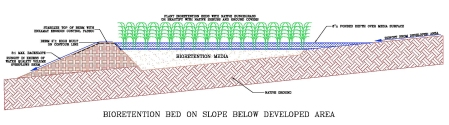 Bioretention bed section detail_CROP
